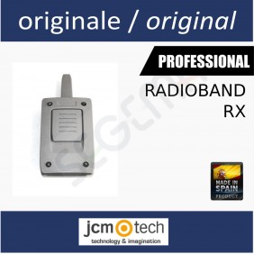 Receiver for RADIOBAND system
